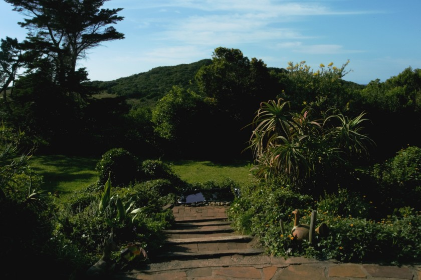 Eastern Cape farm garden
